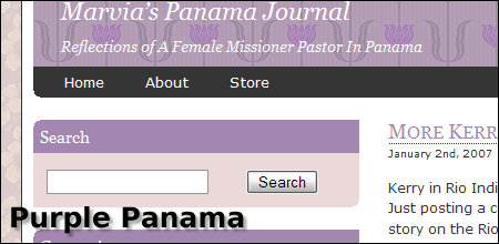 Screenshot of Purple Panama Theme